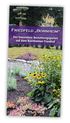 Flyer Friedfeld Bornheim